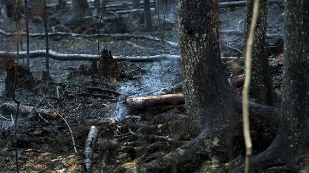 Le feu Timmins 9 vu de plus près