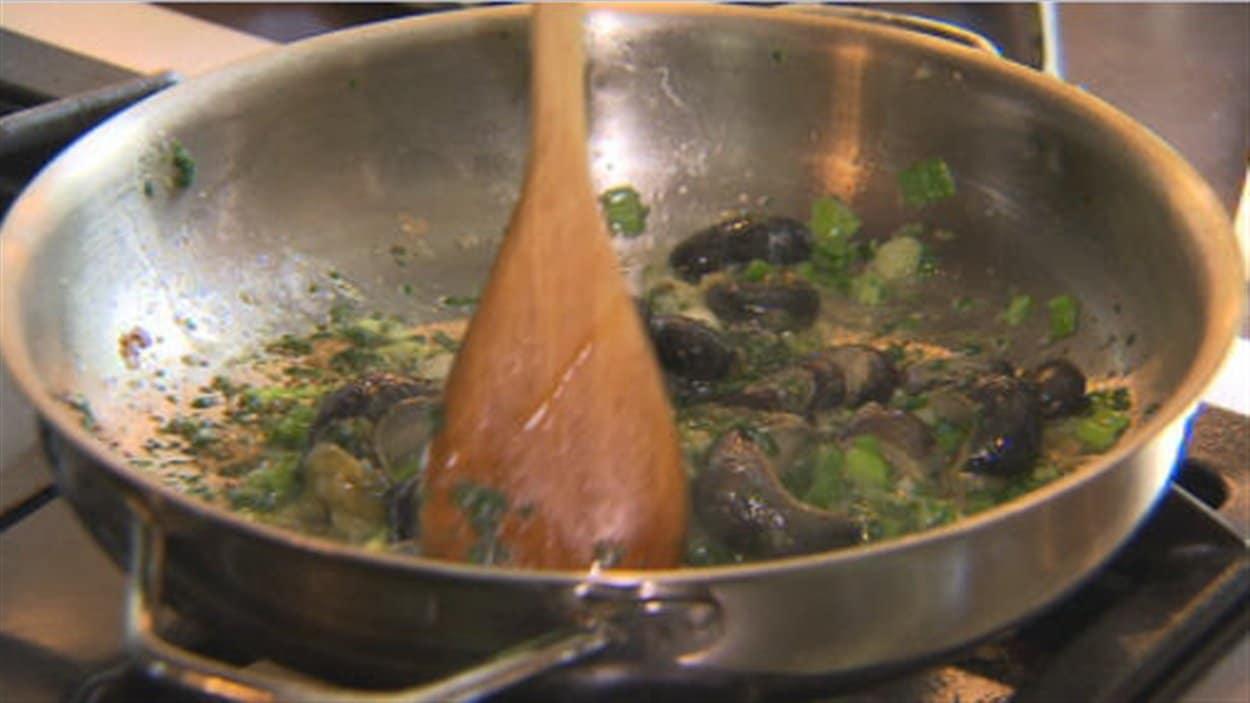 Jean-Pierre Landry croit avoir trouvé une solution pour se débarasser des limaces géantes de façon écologique.