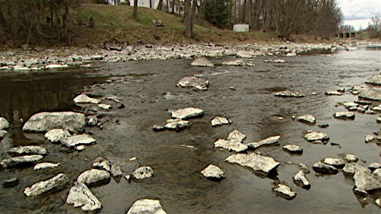 Le niveau de la rivière Rideau est environ deux fois plus bas que la moyenne à ce mois-ci de l'année (juillet 2012). Les roches sont habituellement submergées.
