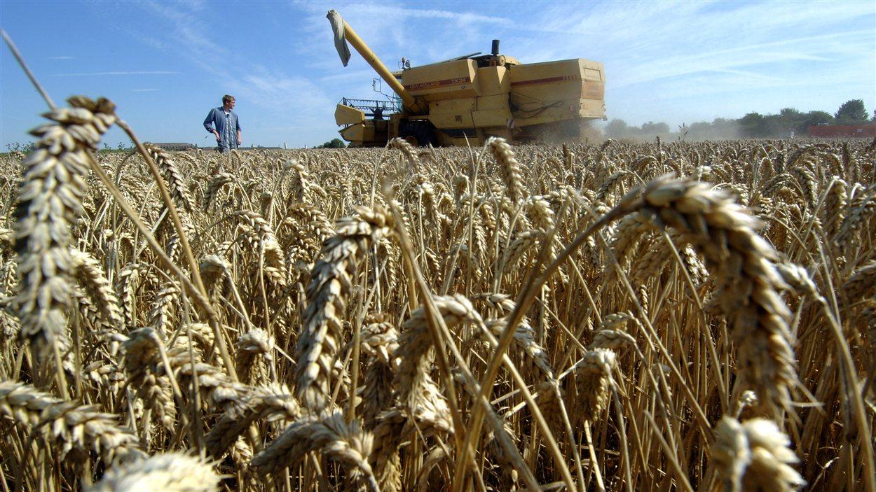 Il faut augmenter la production agricole pour répondre la demande alimentaire toujours croissante.