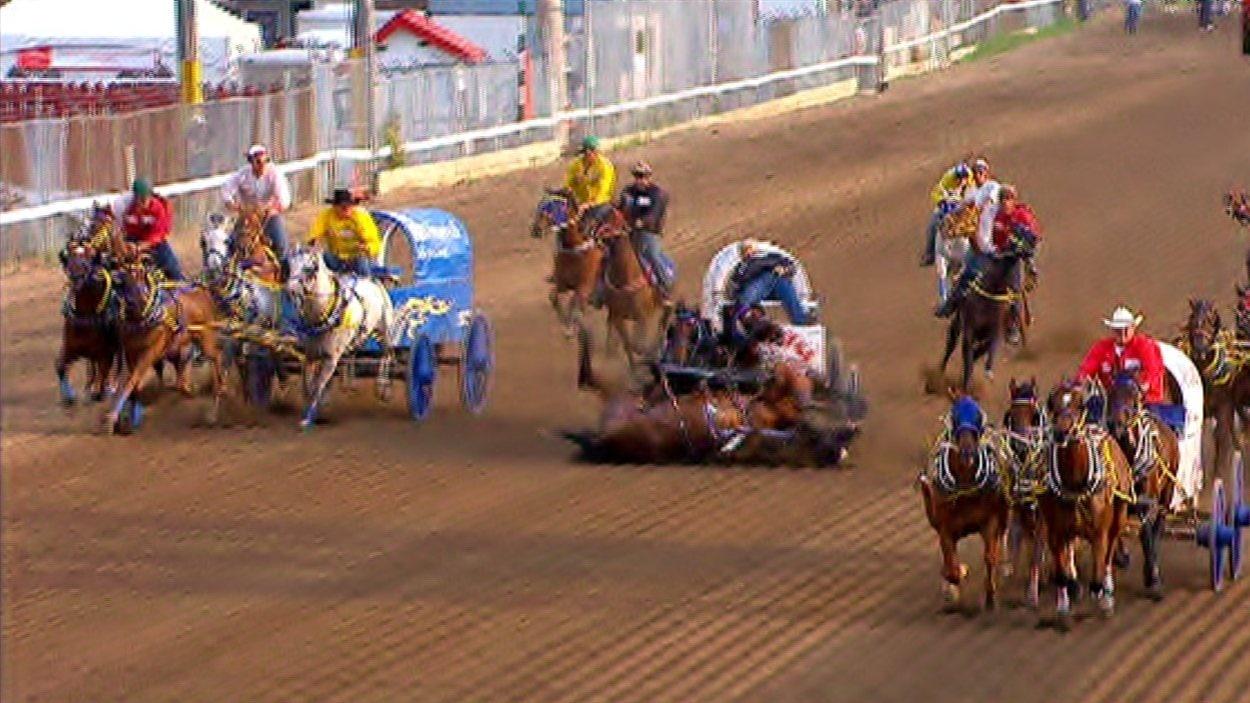 Un cheval s'est effondré, entraînant les autres dans sa chute