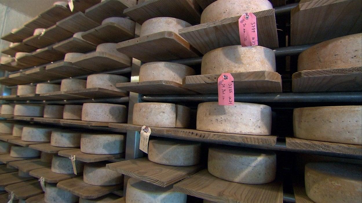 Peu de fromagers développent une expertise pour le fromage de lait cru.