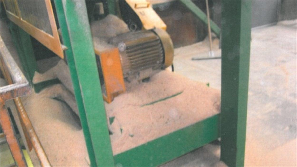 poussière de bran de scie à la scierie Lakeland