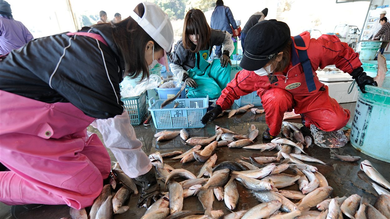 Des Japonaises au marché de poissons Hirakata, à Kitaibaraki, le 6 avril 2011