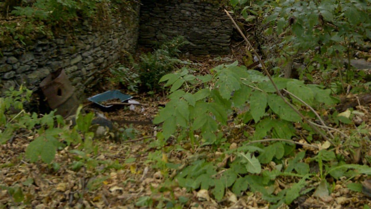 Les ruines de la maison situées sur la terre de la famille Nadeau à Saint-Hilaire.