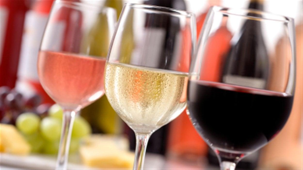 verre-vin-degustation