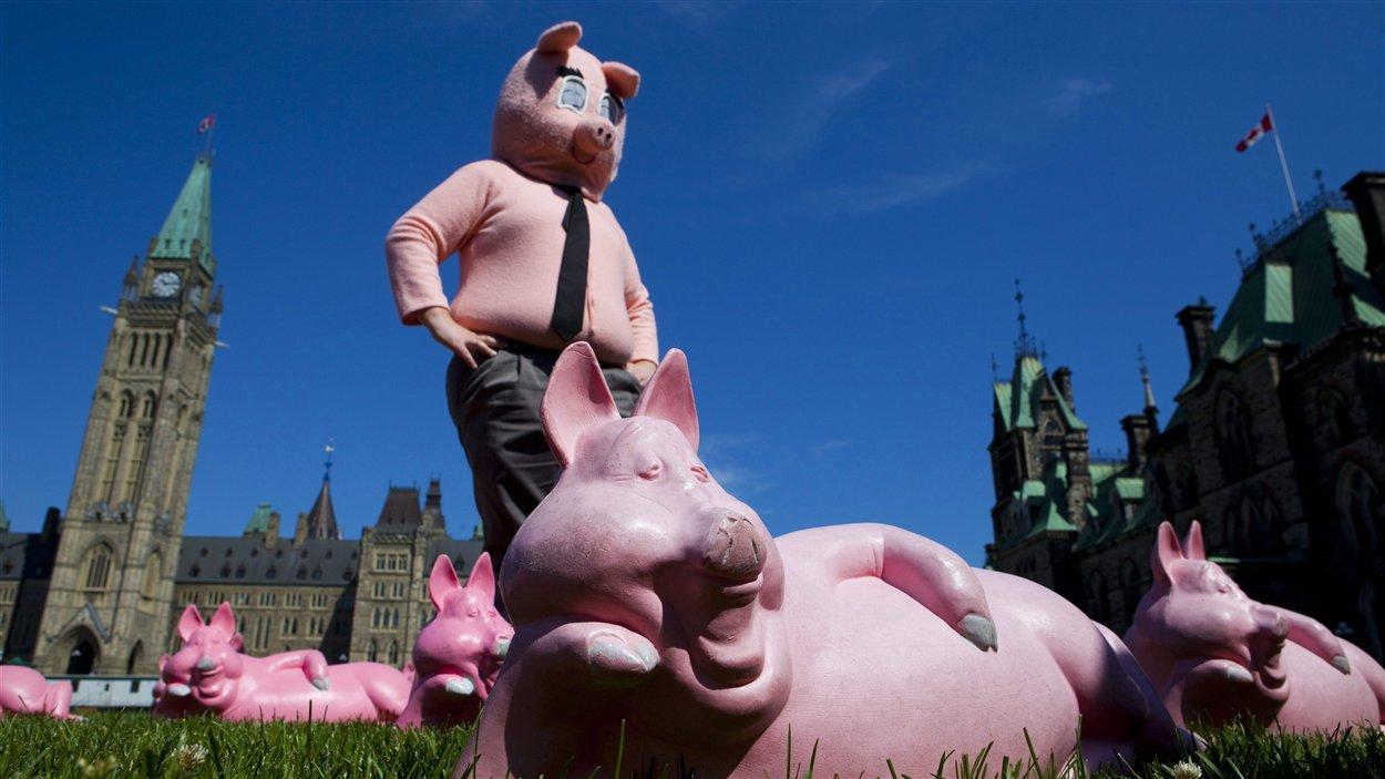 Un homme déguisé en cochon pose en avant de la colline du Parlement pendant la conférence de presse de la Fédération de l'entreprise indépendante (FCEI) pour dénoncer les régimes de retraite de la fonction publique, le 15 juin 2010.