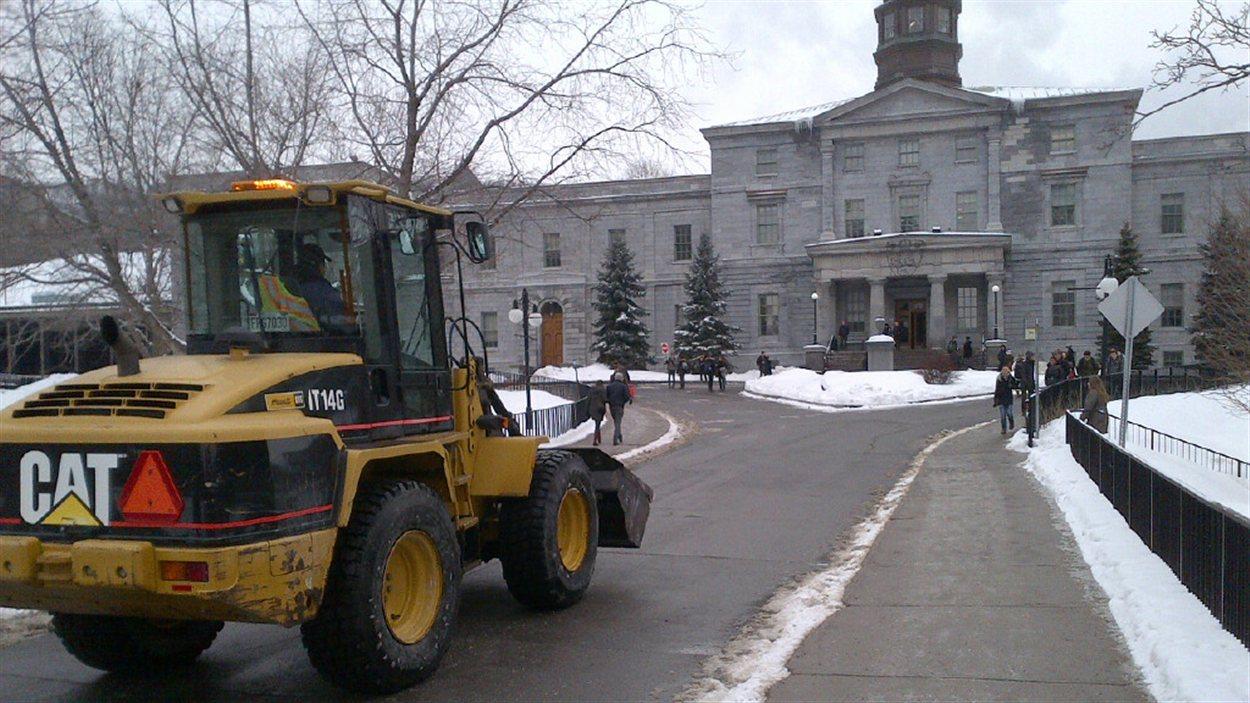 L'incident a eu lieu au nord du campus de l'Université McGill.