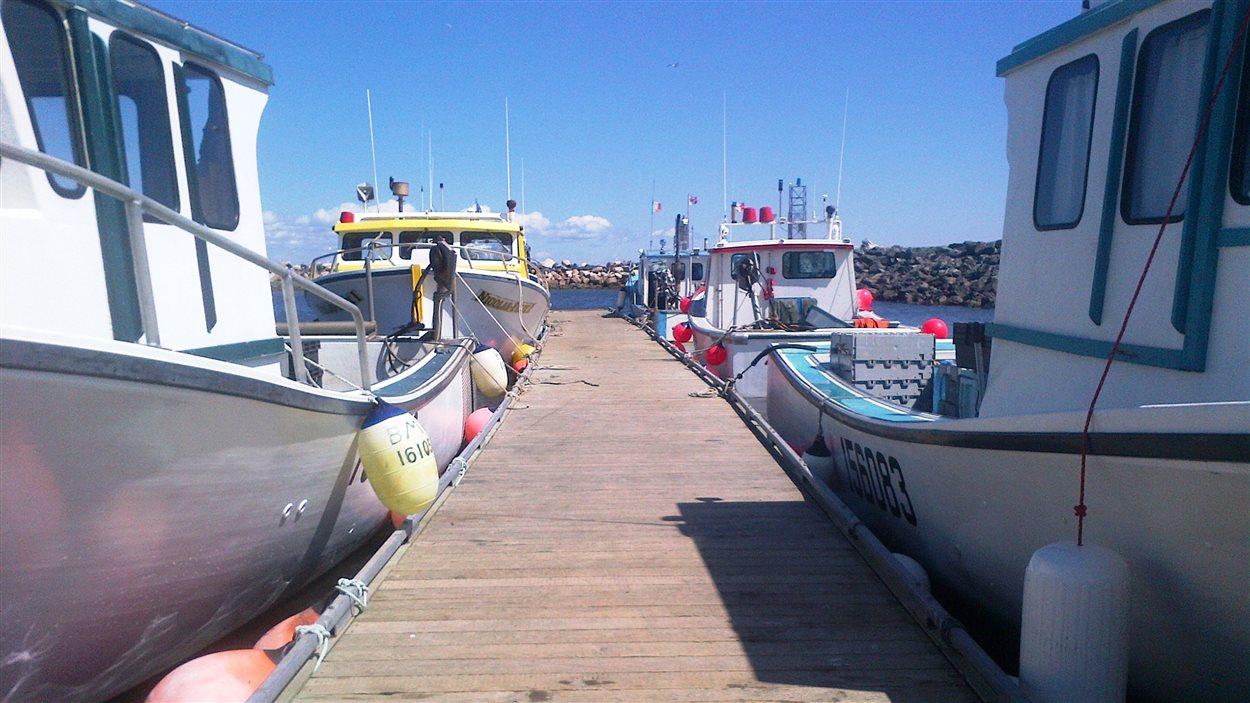 Des bateaux de pêche au homard