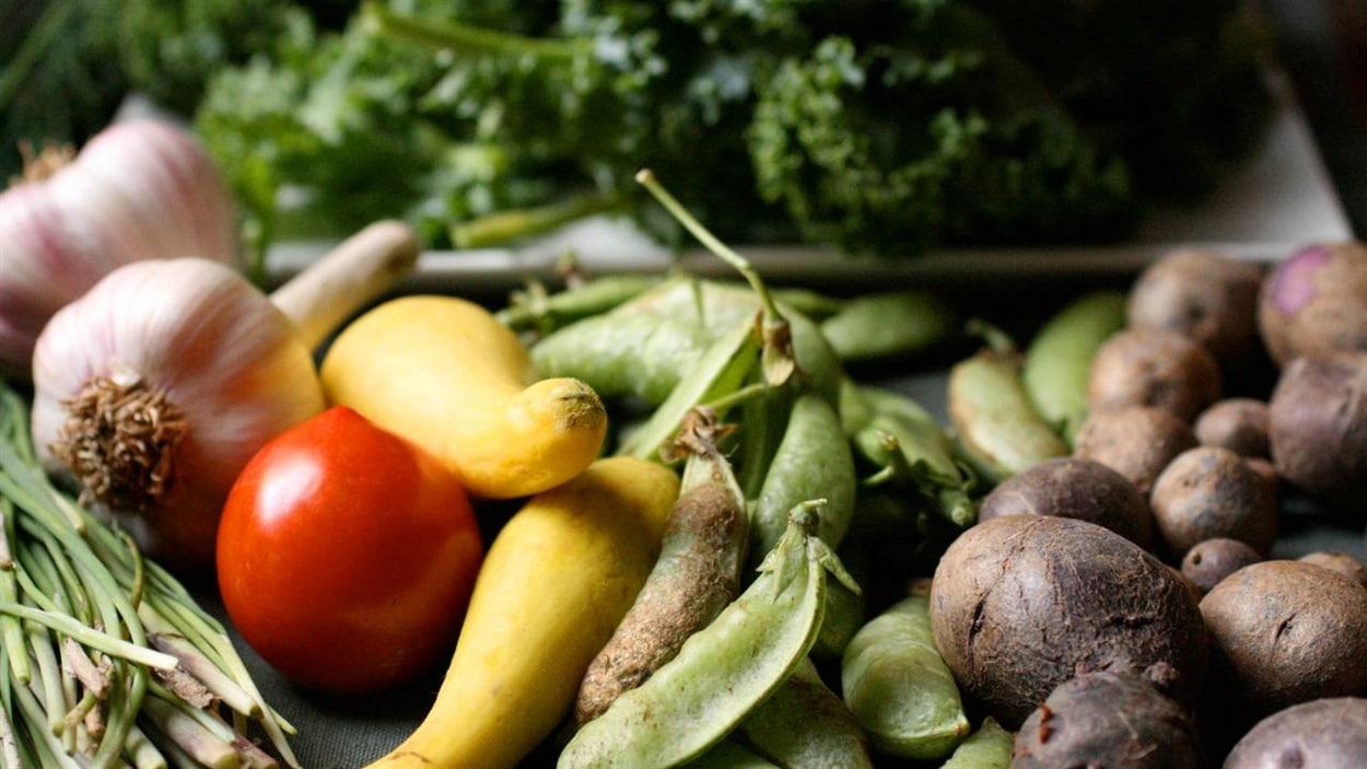 Politique de souveraineté alimentaire du Québec