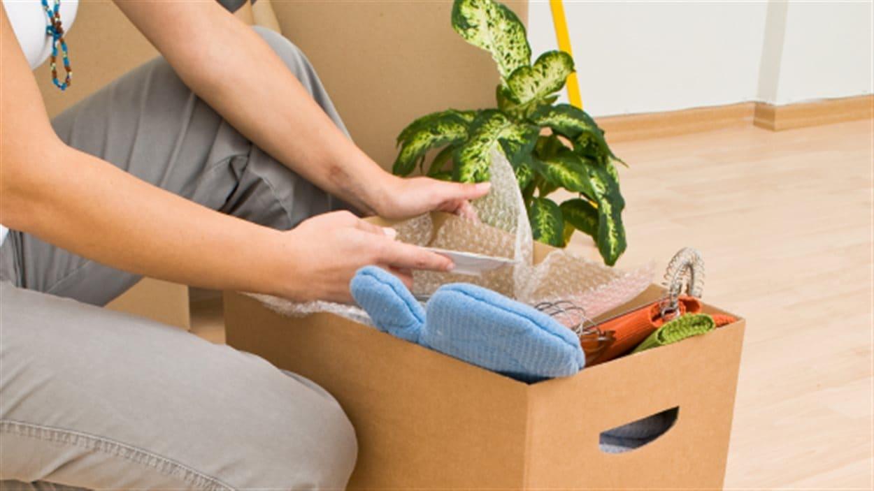 emballer-plante-demenagement