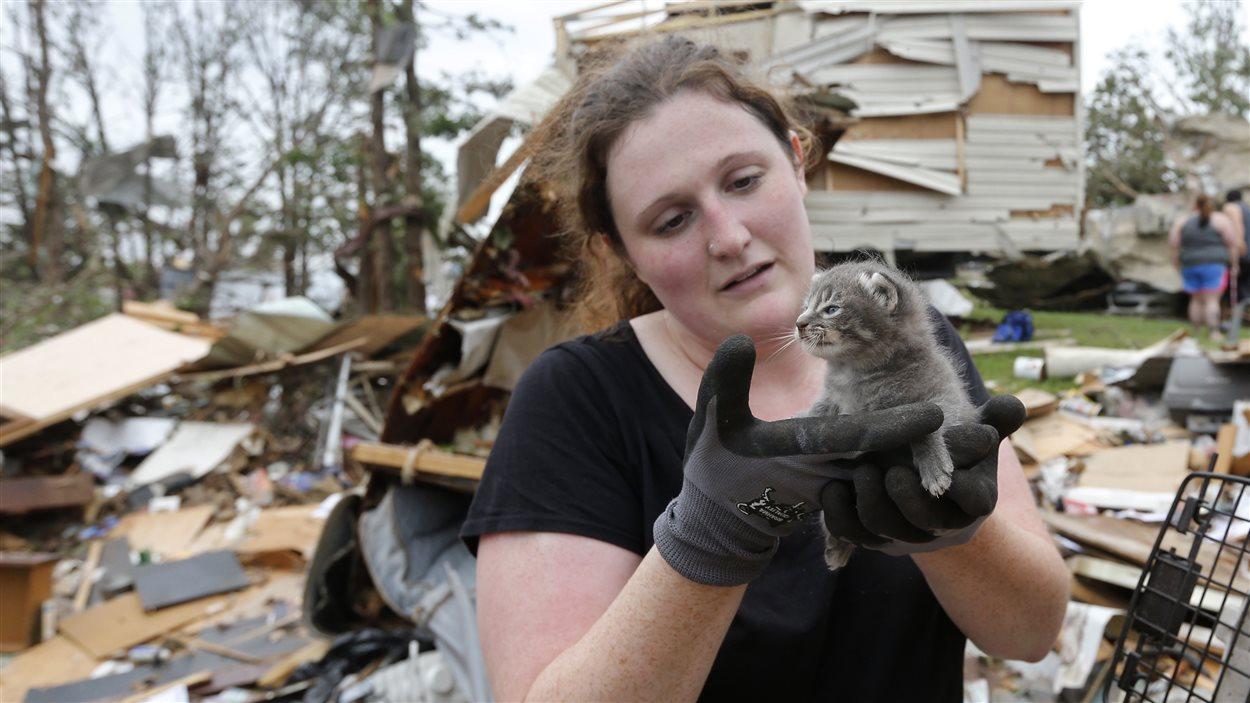 Une secouriste retourve un chaton dans les débris d'une résidence.