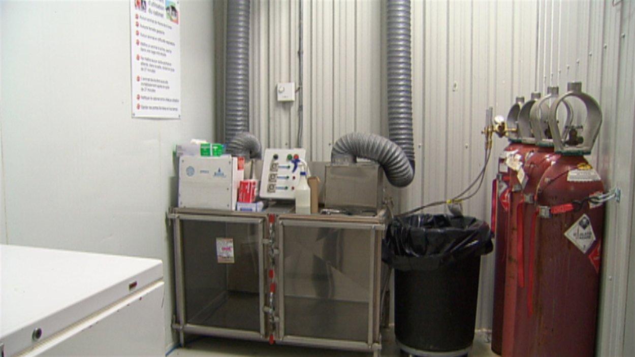 Les animaux sont placés dans une petite pièce où du monoxyde de carbone est libéré.