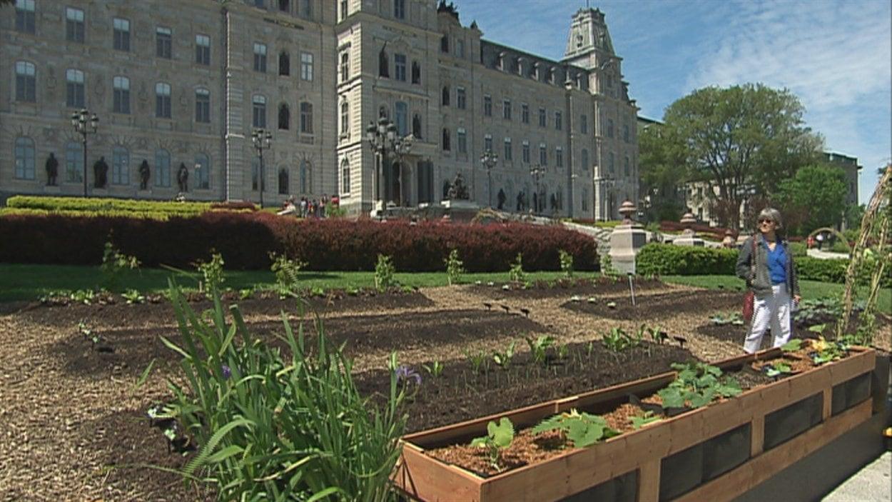 Le potager urbain est aménagé devant l'Assemblée nationale.