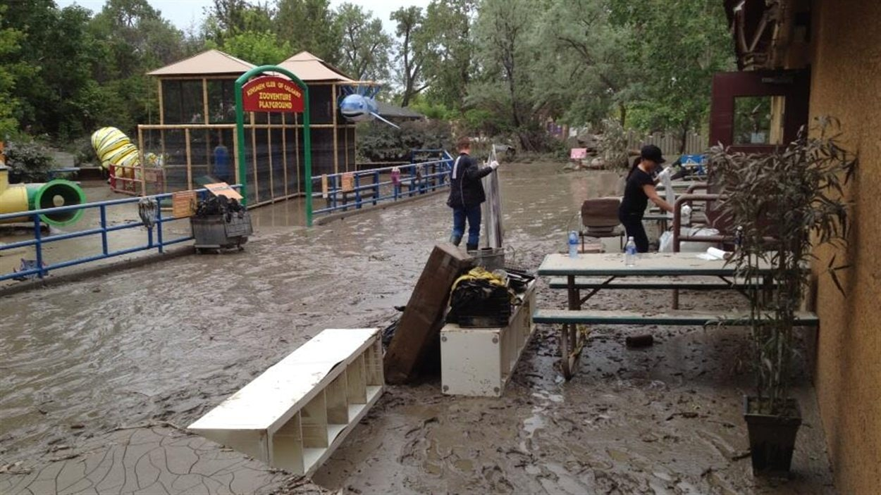 Opération nettoyage au zoo de Calgary, le 25 juin 2013