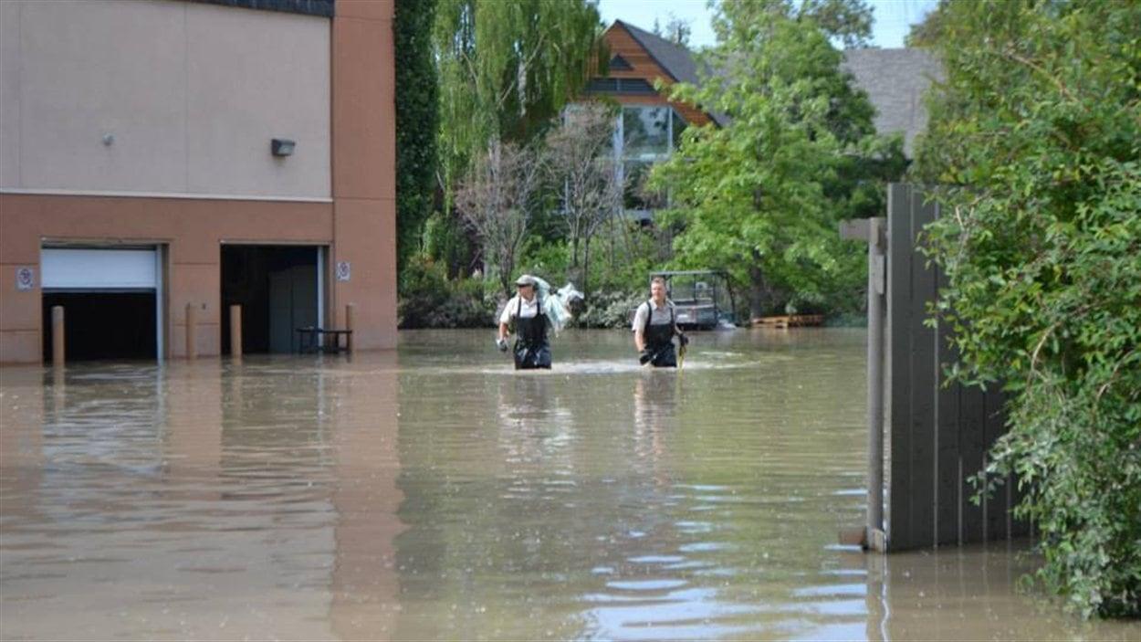 Beaucoup d'eau s'est retrouvée sur le site du zoo de Calgary lors de inondations du sud de l'Alberta de juin 2013.