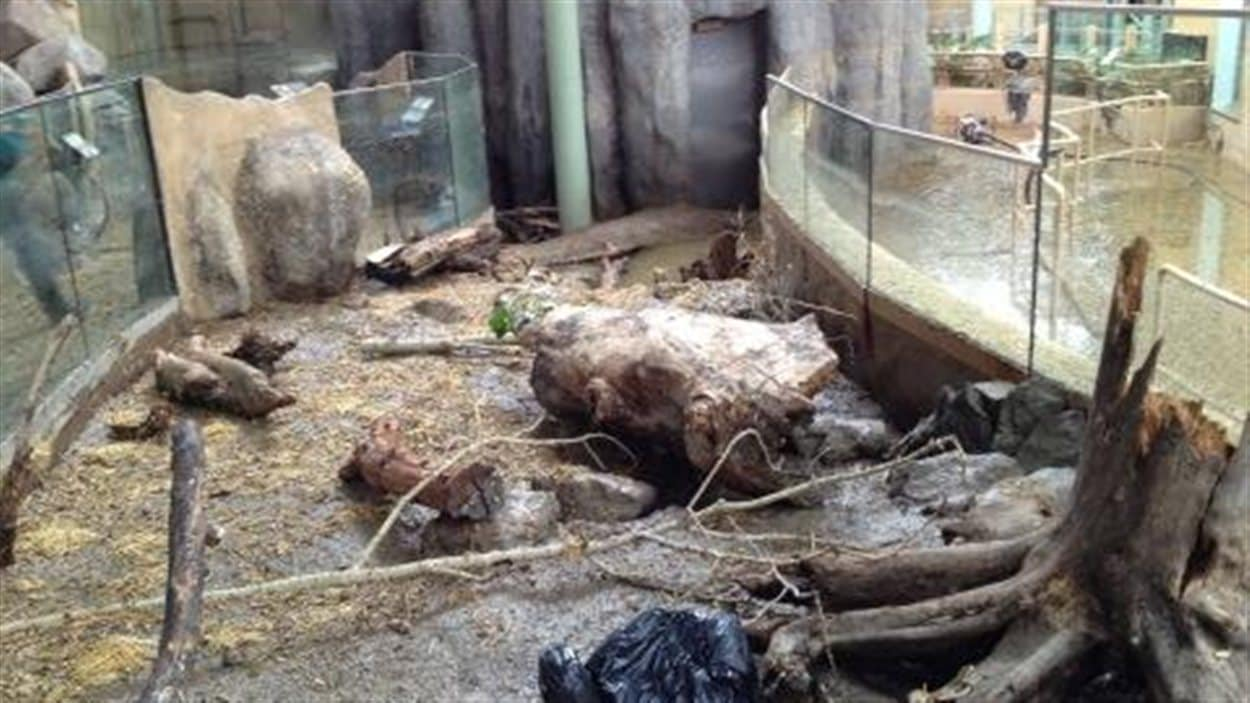 Le site d'exposition des hippopotames du zoo de Calgary, à la suite des inondations du sud de l'Alberta de juin 2013.