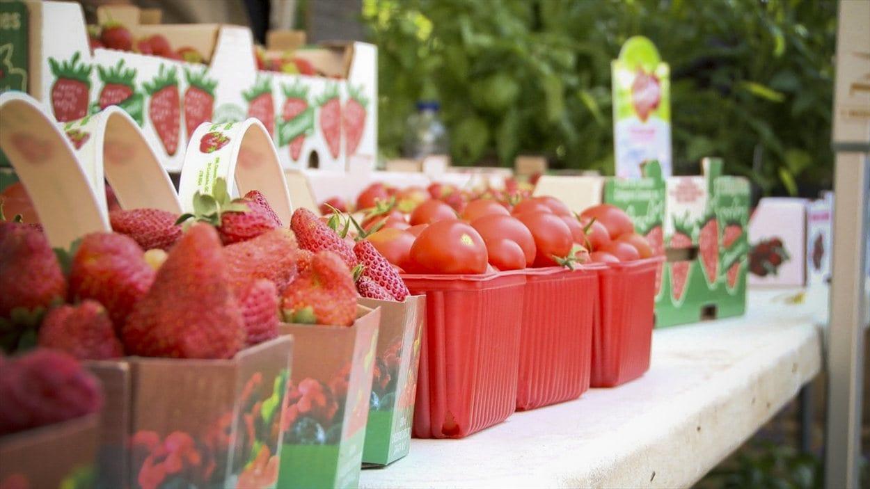 Des fruits en vente au marché public du Vieux Saint-Eustache