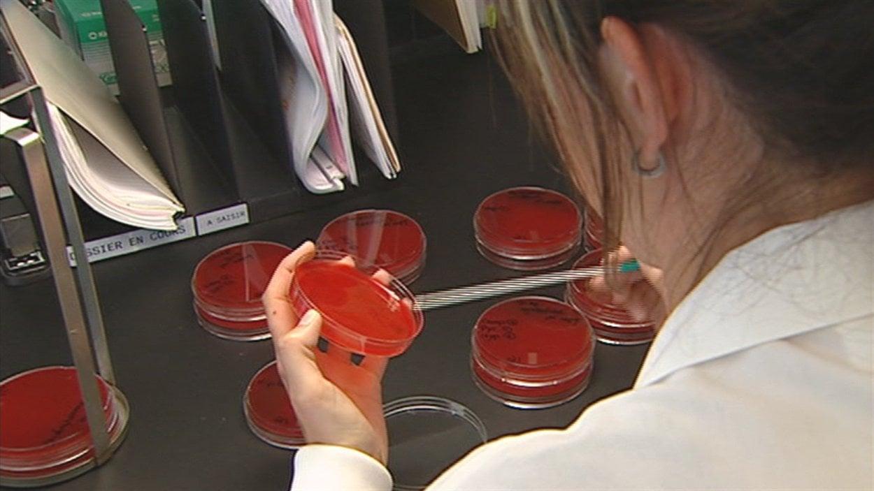 Un autre cas de légionellose est confirmé dans la région.