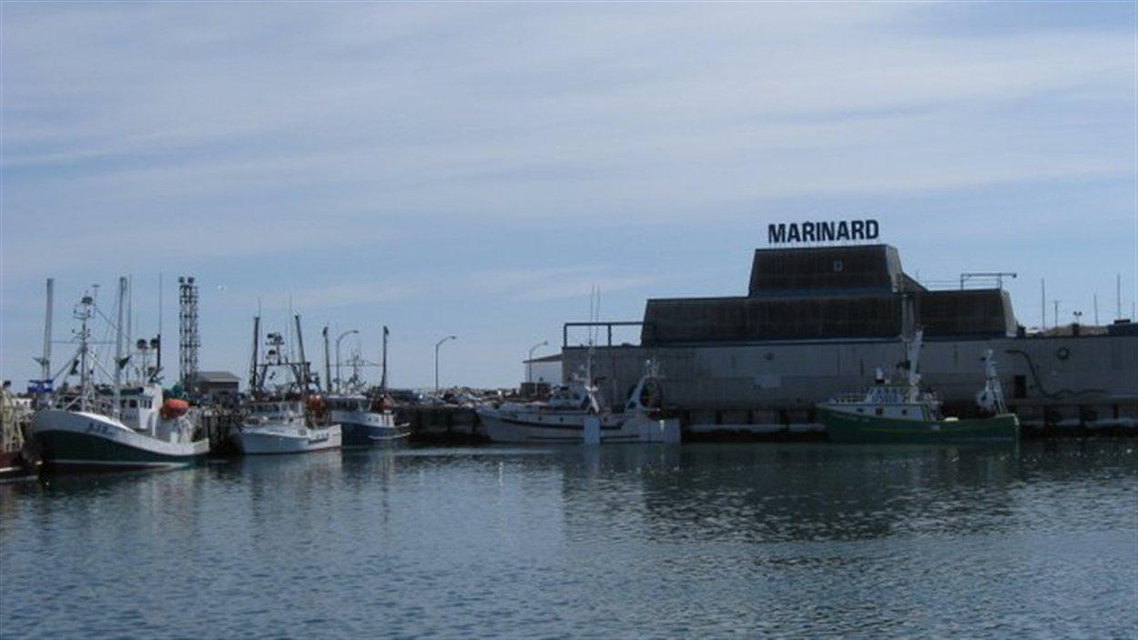 Le havre de pêche de Rivière-au-Renard quai Marinard bateaux usines