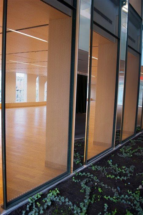 Du lierre grimpera sur les murs intérieurs de la bibliothèque Marc-Favreau
