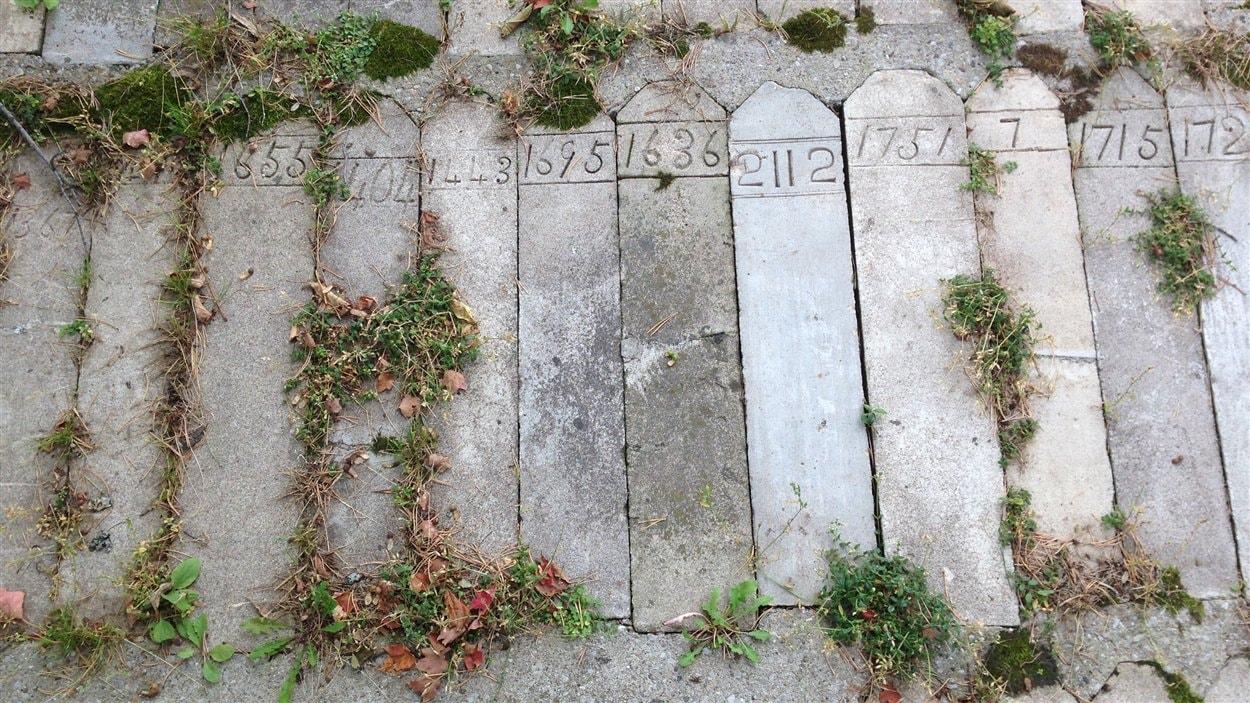 Seuls des numéros de pensionnaires marquent l'endroit où certains d'entre eux ont été enterrés près du Centre Huronia.
