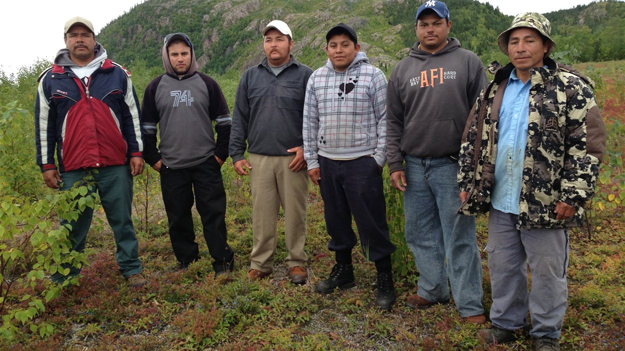 Agustin, Isaias, Norberto, Jaime, Hugo et Martin, des travailleurs du Mexique