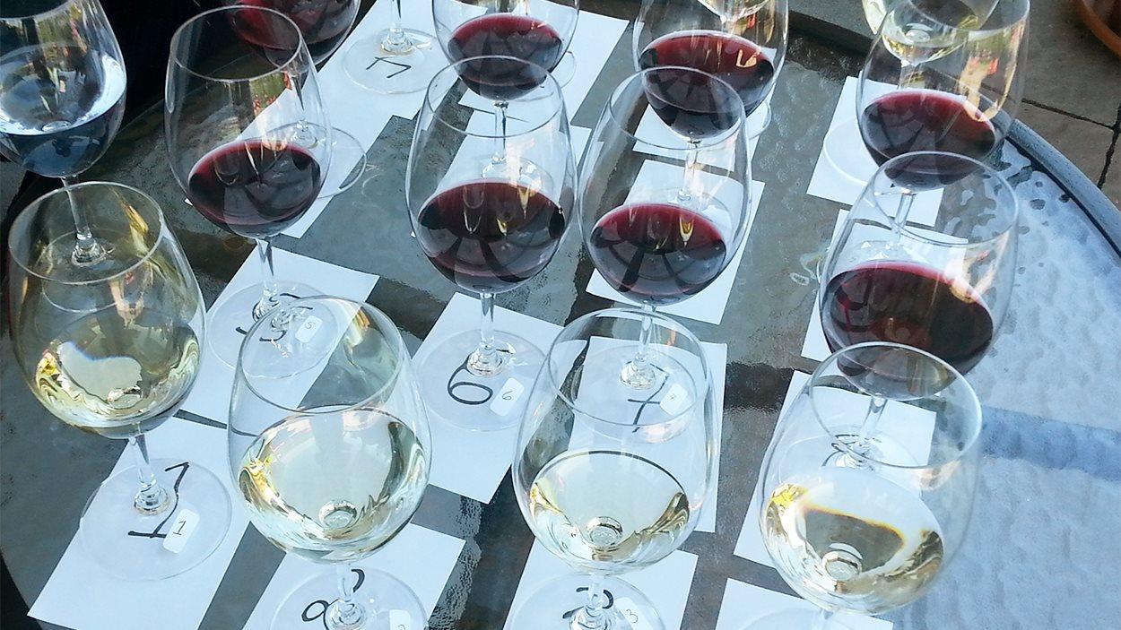 Que pensez-vous des vins québécois?