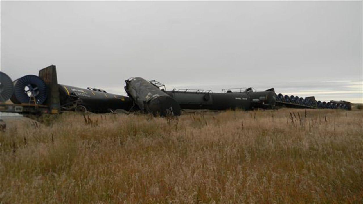 Le train d'un demi-kilomètre de long est composé de 130 wagons, dont 55 sont remplis et 75 sont vides.