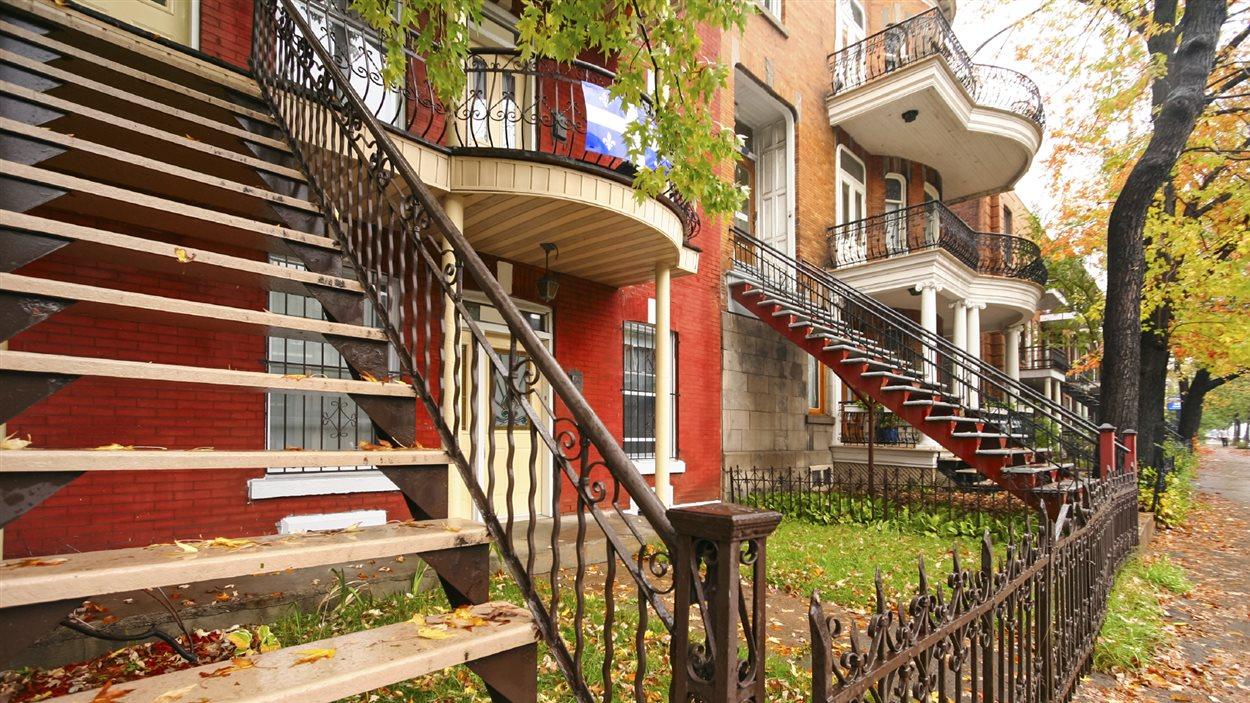 Amazing Appartement De Montreal