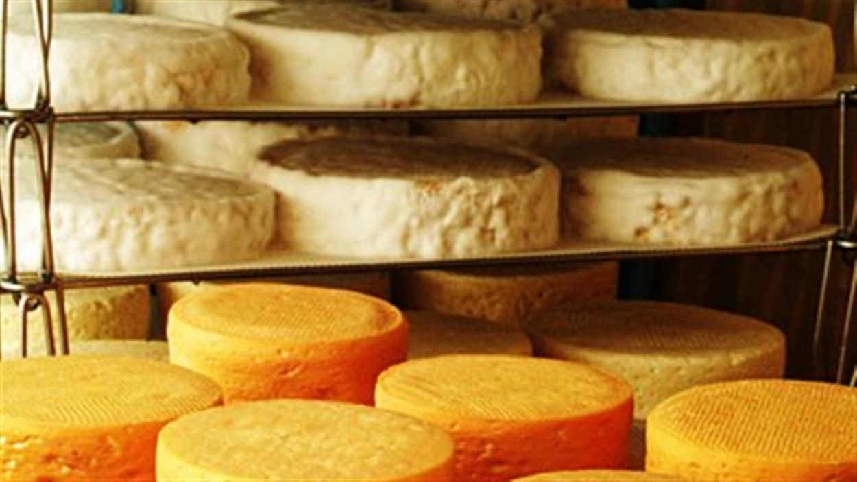 Une crise dans l'industrie du fromage?