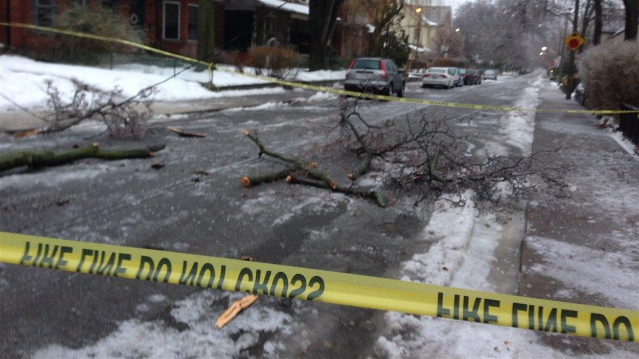 Des fils électriques sont tombés à plusieurs endroits à Toronto, comme sur la rue Givins. Les policiers ont fermé la rue.
