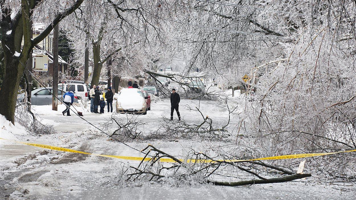 Les piétons contournent les branches mortes dans les rues de Toronto.