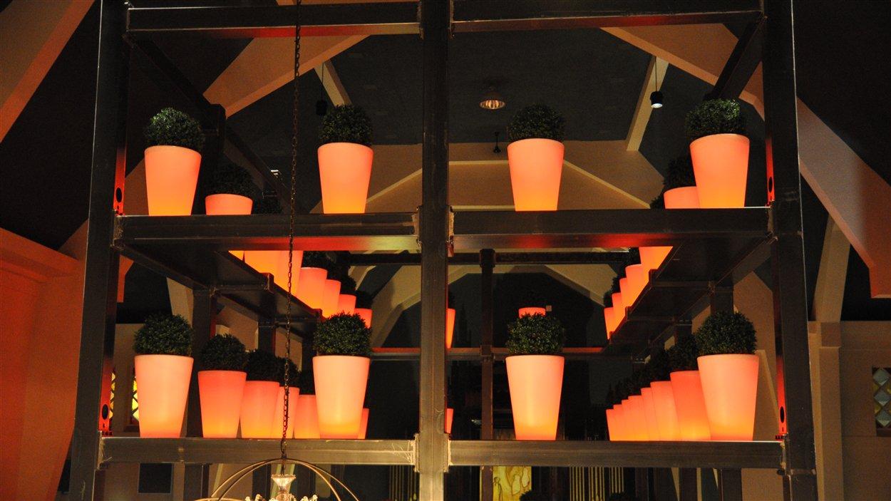 Des pots sur une structure d'acier meublent l'espace dans l'ancienne nef