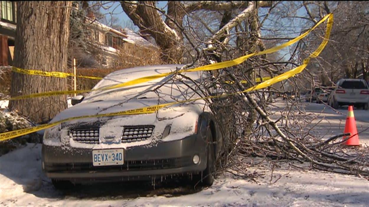La tempête de verglas qui a frappé Toronto a causé la chute de plusieurs branches.