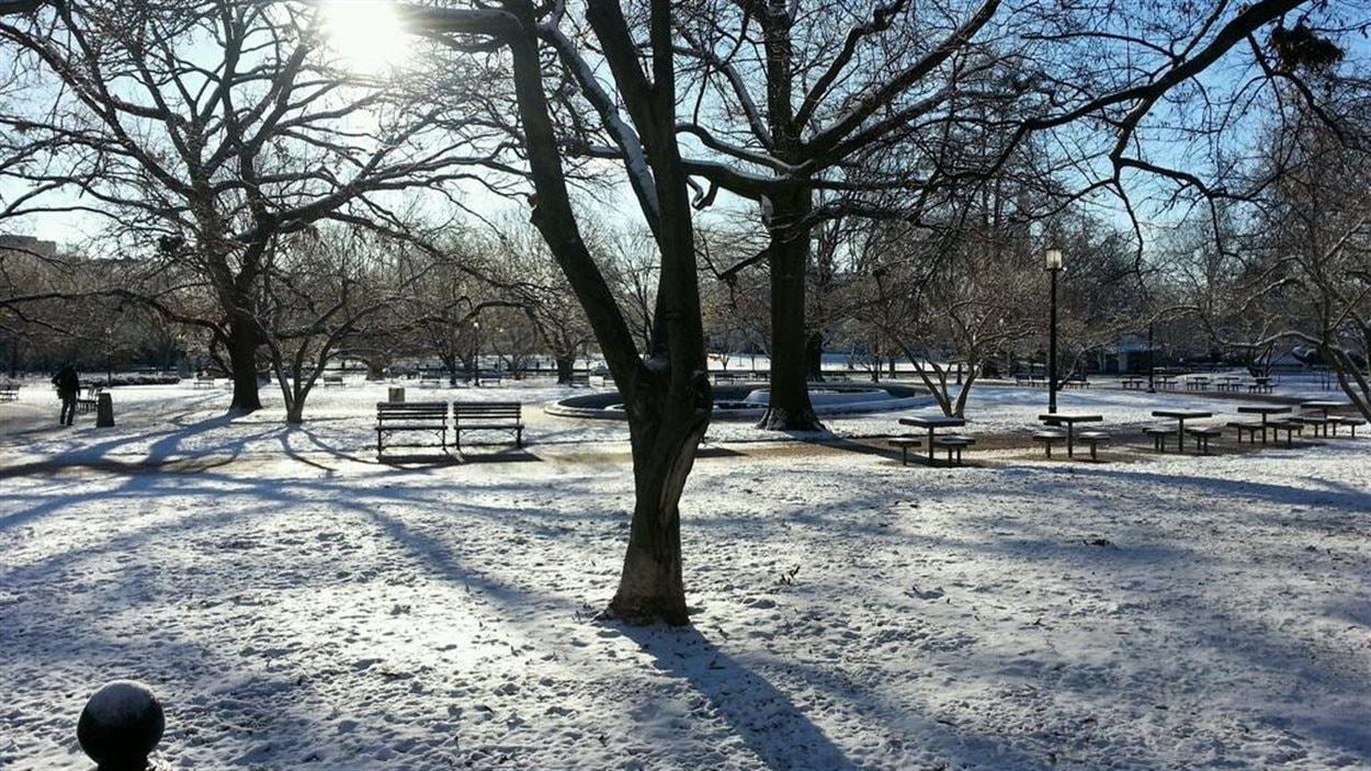 Washington sous la neige, le 3 janvier