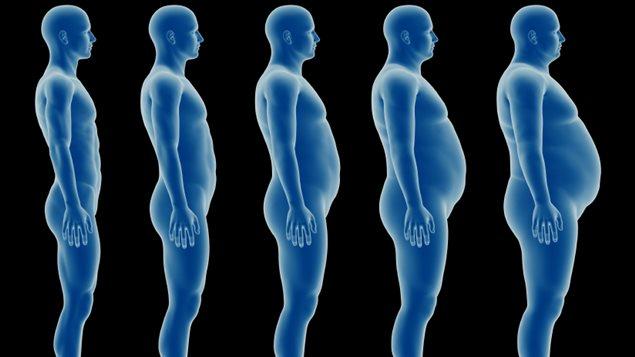 Trois fois plus de Canadiens obèses qu'en 1985, révèle une ...