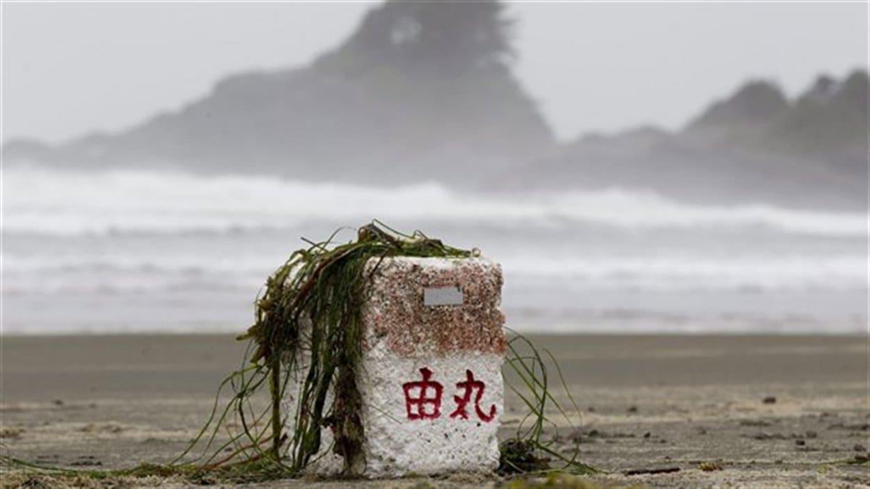 Un des nombreux débris qui se sont échoués sur les plages de l'île de Vancouver depuis le tsunami japonais.