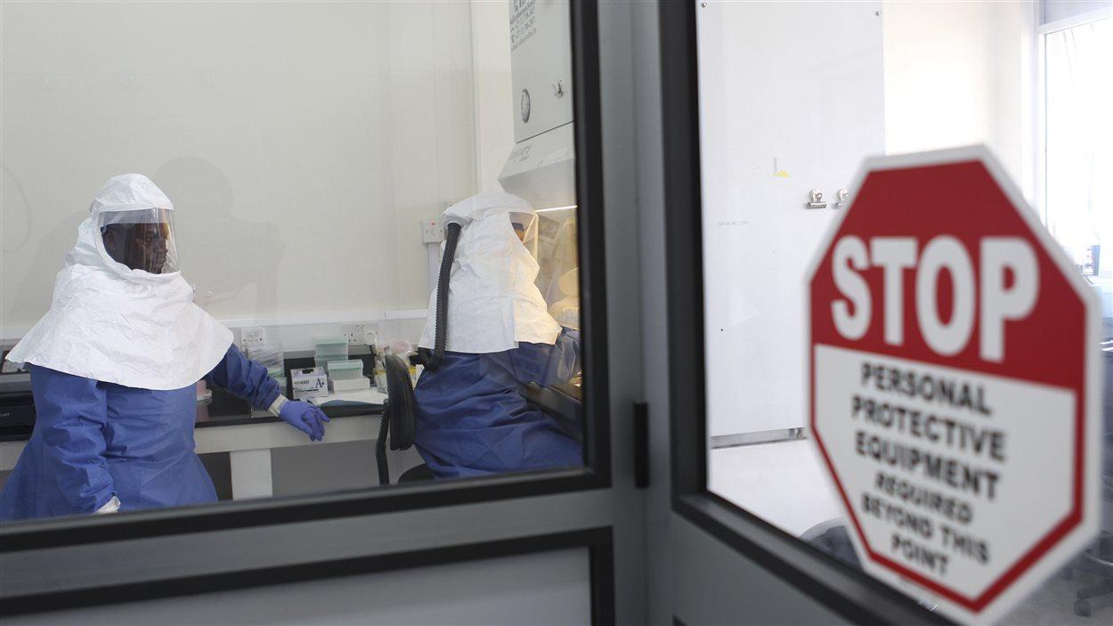 Des chercheurs travaillent sur des échantillons du virus Ebola dans un laboratoire en Ouganda en août 2012.