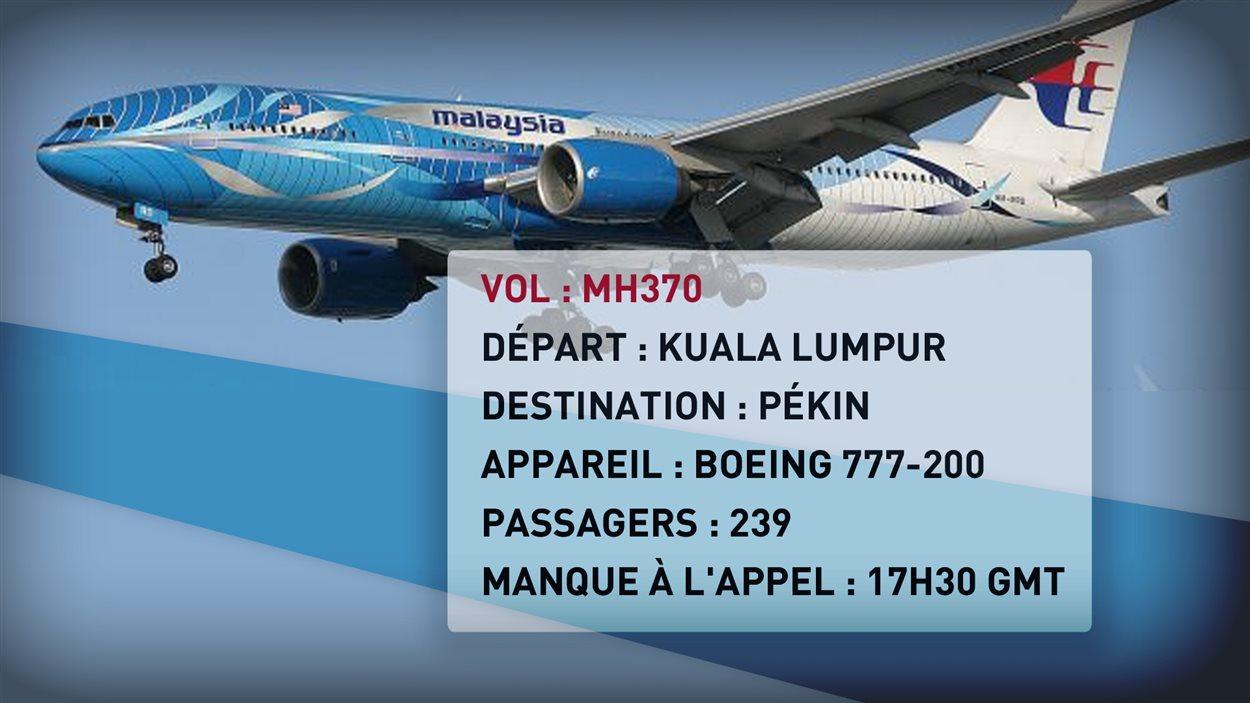 Détails de l'avion disparu