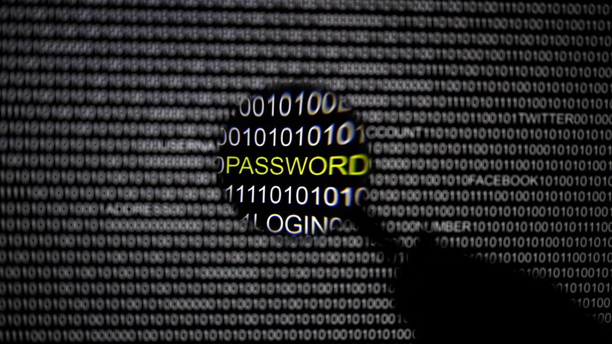 Vol de données personnelles en ligne, mot de passe.