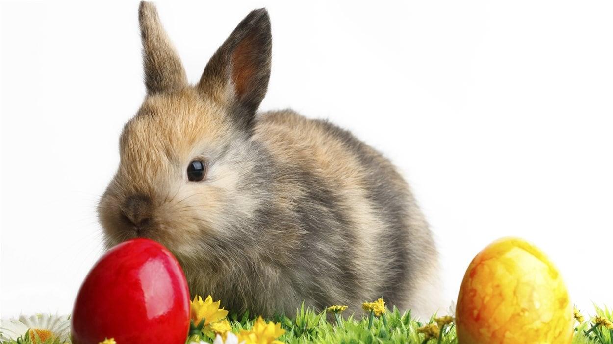 Un lapin et deux oeufs de Pâques