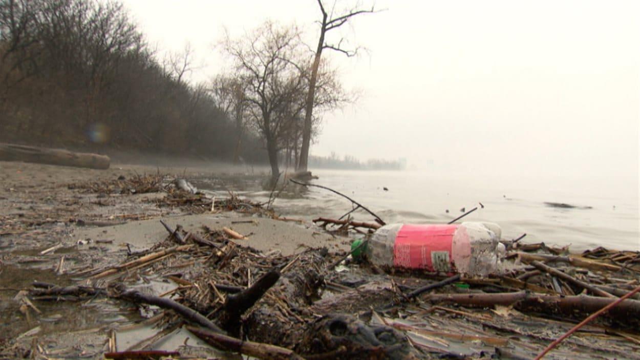 Une plage sur le bord de la rivière des Outaouais.