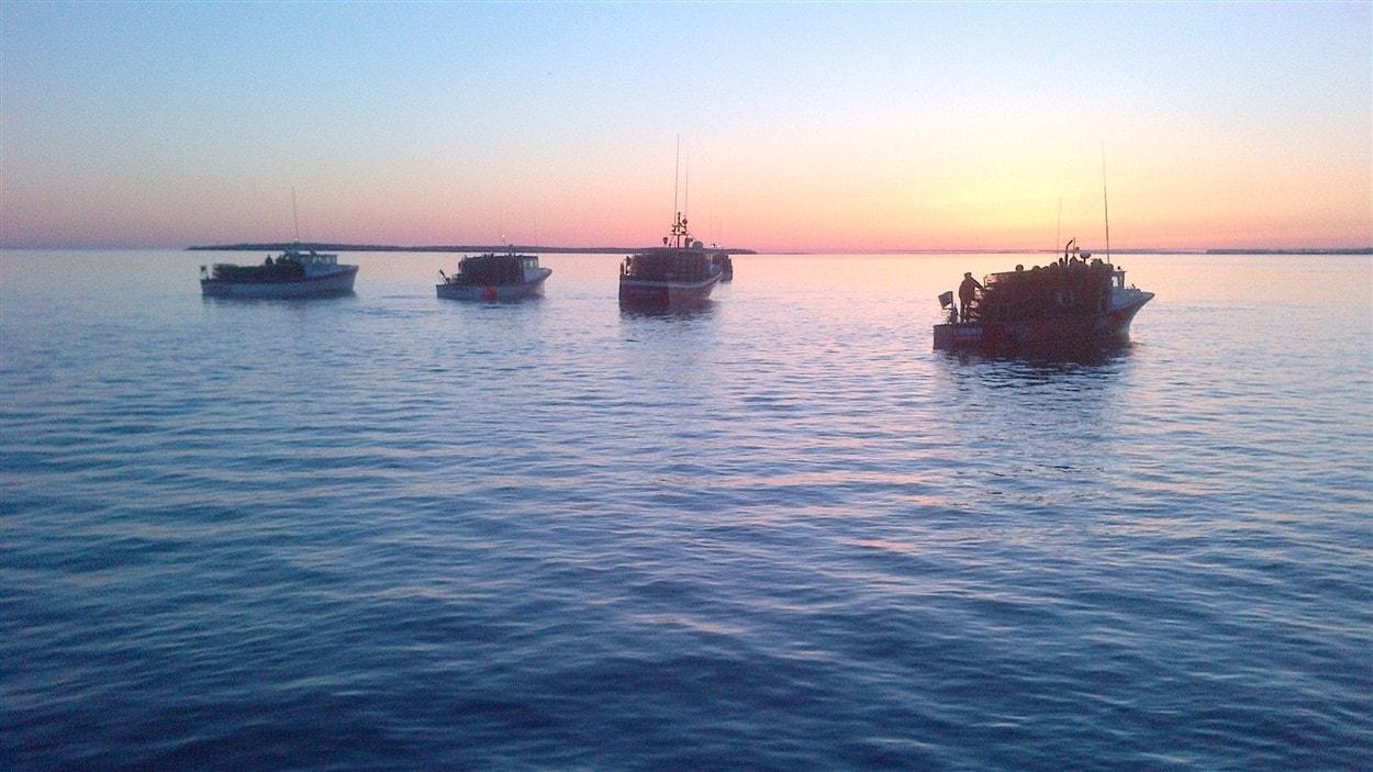 Pêche au homard 2014