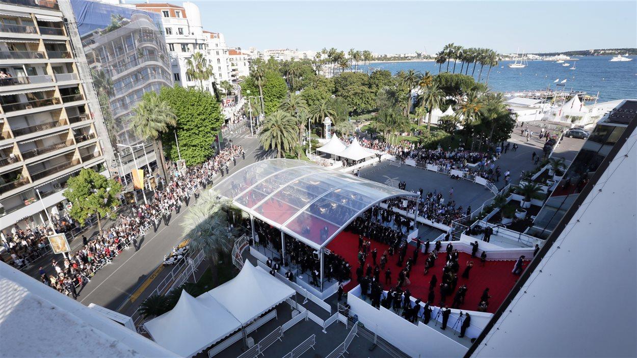 Le tapis rouge du Palais des festivals, à Cannes