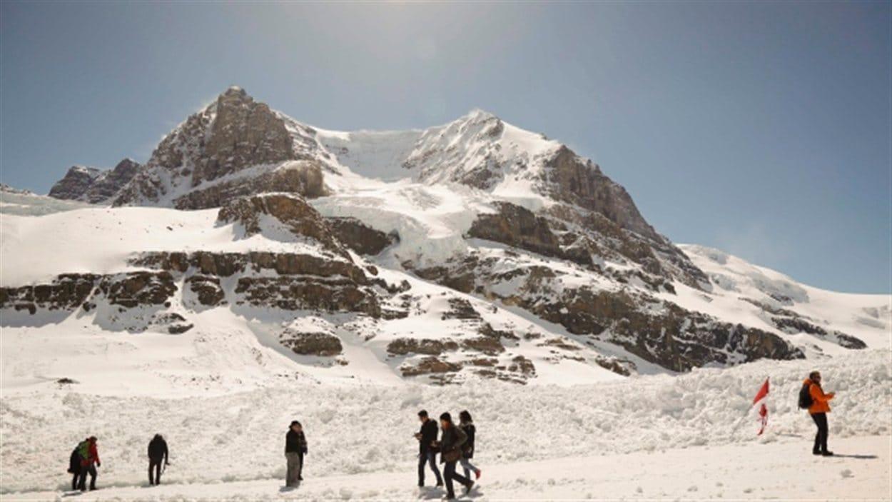 Le glacier Athabasca dans les Rocheuses
