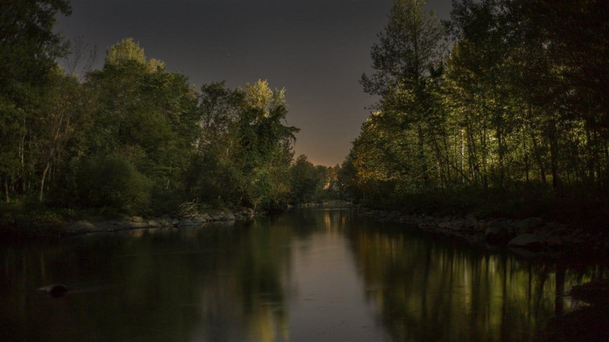 La rivière Chaudière, lourdement contaminée par le déversement de pétrole -  Août 2013