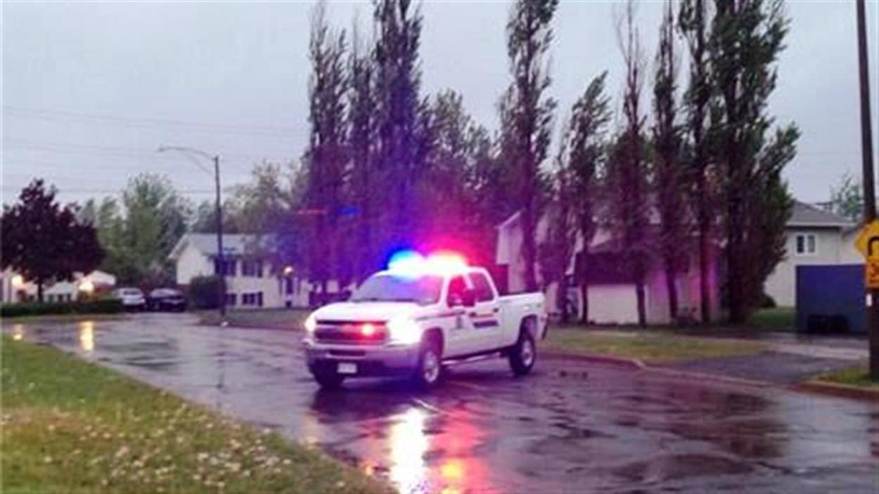 Justin Bourque était caché entre des arbres et un grillage dans une cour arrière de cette rue dans le quartier de Pinehurts