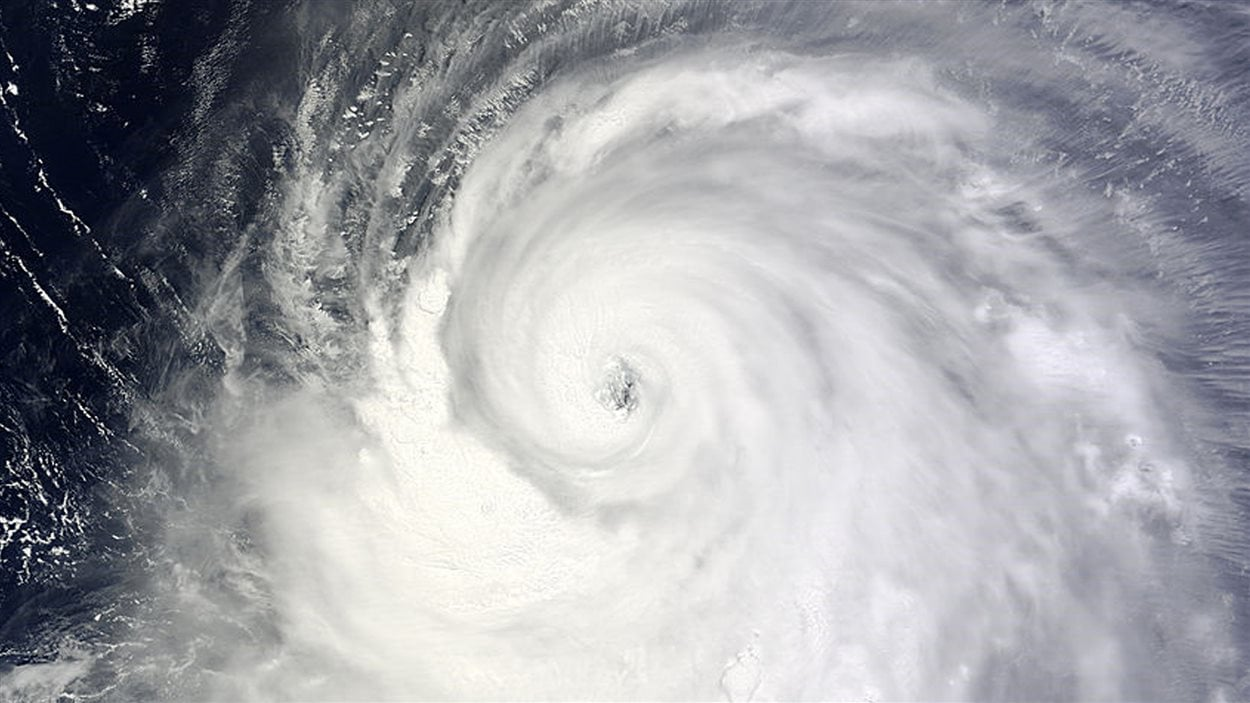 Image satellite du typhon Neoguri.