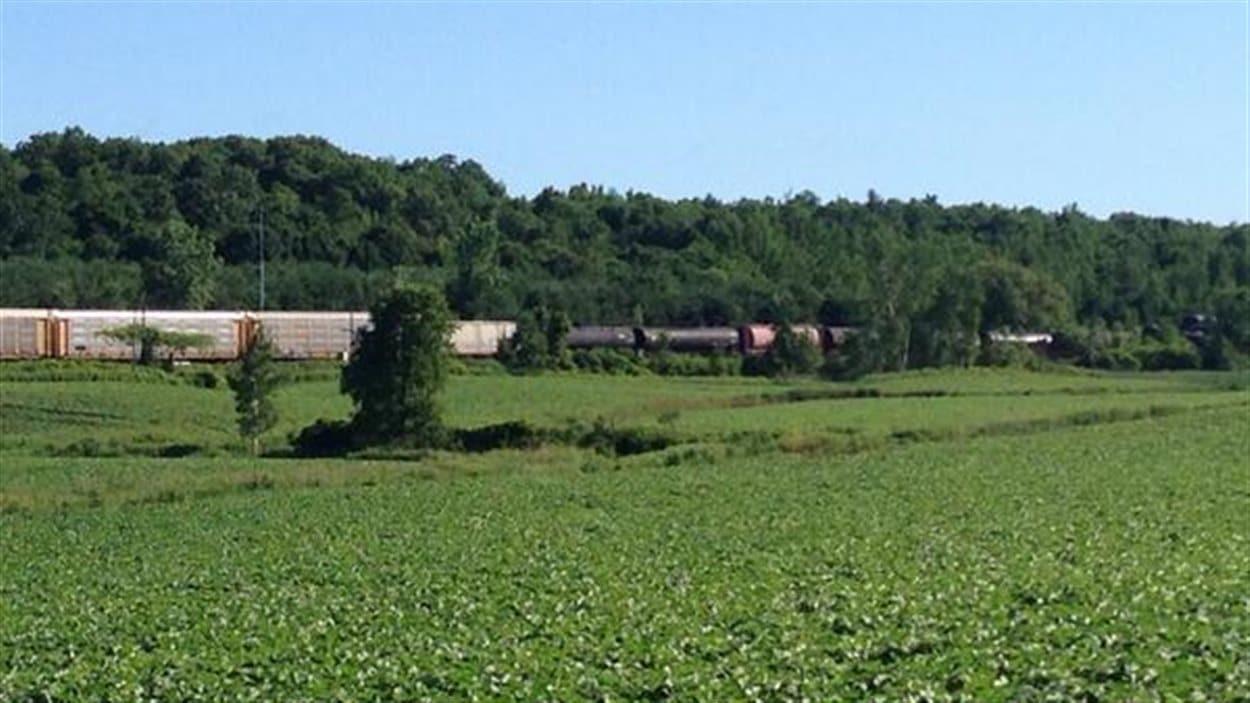 Le train du CN dont certains wagons sont toujours debout.